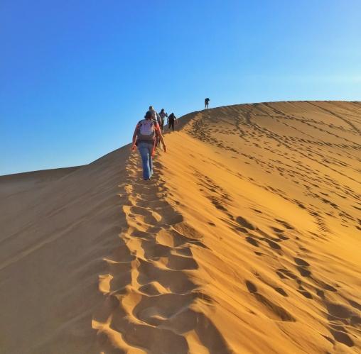 dune7-1