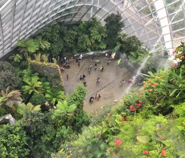 cloudforest-3