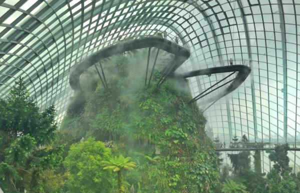 cloudforest-4
