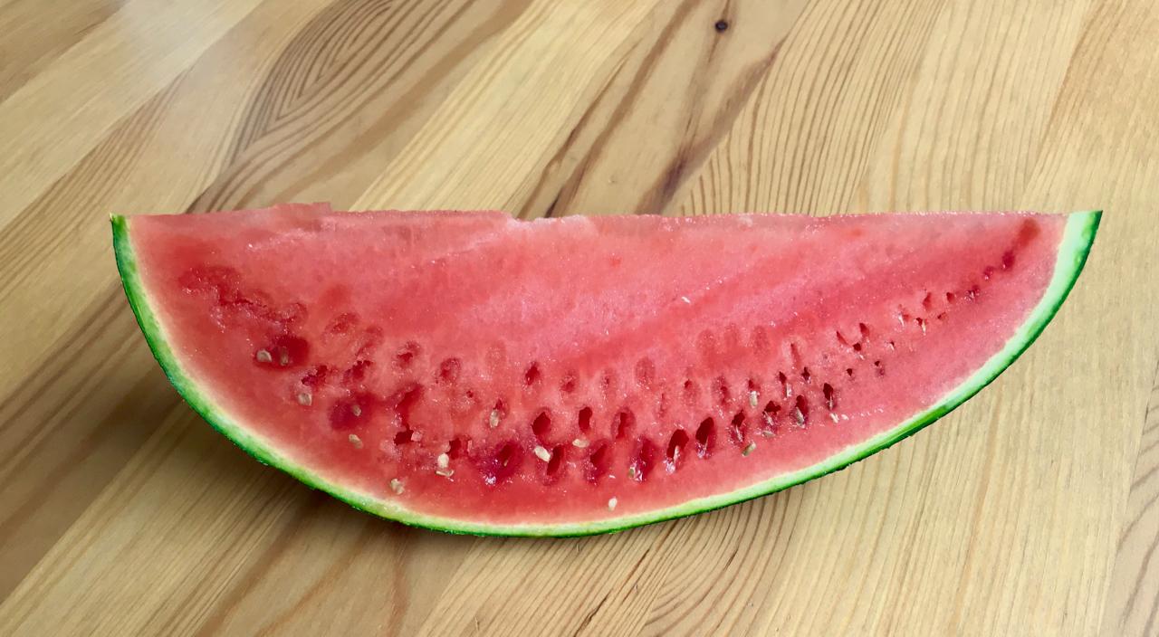 melon-2